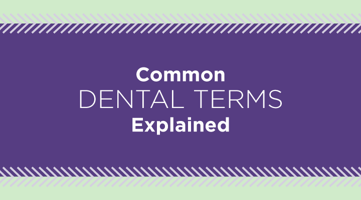 Common Dental Insurance Terms Explained